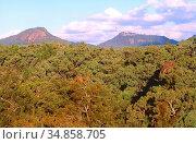 Hilly landscape, forest, Warrumbungle National Park, NSW, Australien. Стоковое фото, фотограф R. Kunz / age Fotostock / Фотобанк Лори