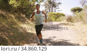 Woman jogging in forest. Стоковое видео, агентство Wavebreak Media / Фотобанк Лори