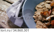 Wheat flakes with dried fruits in a bowl 4k. Стоковое видео, агентство Wavebreak Media / Фотобанк Лори