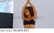 Model posing for photo shoot in photo studio 4k. Стоковое видео, агентство Wavebreak Media / Фотобанк Лори