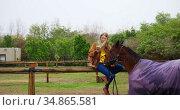 Woman using mobile phone with horse on wooden fence 4k. Стоковое видео, агентство Wavebreak Media / Фотобанк Лори