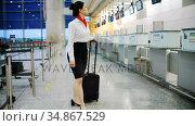 Airline check-in attendant walking with luggage 4k. Стоковое видео, агентство Wavebreak Media / Фотобанк Лори