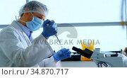 Scientist experimenting in laboratory 4k. Стоковое видео, агентство Wavebreak Media / Фотобанк Лори