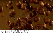 Falling coffee beans on the brown background 4k. Стоковое видео, агентство Wavebreak Media / Фотобанк Лори