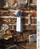 Menta Edouard - Lesendes Dienstmädchen in Einer Bibliothek - Swiss... Редакционное фото, фотограф Artepics / age Fotostock / Фотобанк Лори