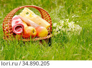 Picnic basket with apples bananas and cheese on green grass. Стоковое фото, фотограф Olena Mykhaylova / easy Fotostock / Фотобанк Лори