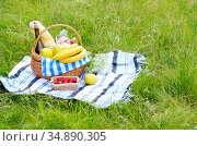 Picnic basket with fruits wine and bread on the grass with strawberry... Стоковое фото, фотограф Olena Mykhaylova / easy Fotostock / Фотобанк Лори