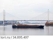 Timber carrying vessel floating under cable-stayed bridge on the Neva river. St-Petersburg, Russia (2014 год). Стоковое фото, фотограф Кекяляйнен Андрей / Фотобанк Лори