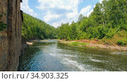 A river in the green forest - water streams forwards. Стоковое видео, видеограф Константин Шишкин / Фотобанк Лори
