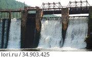 Water dam in the forest - river water falls down the brick wall. Стоковое видео, видеограф Константин Шишкин / Фотобанк Лори