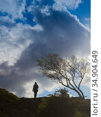 Girl walks in windy weather over hilly terrain. Стоковое фото, фотограф Юрий Бизгаймер / Фотобанк Лори
