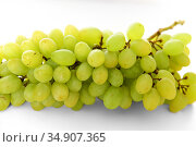 Sultana, white (pale green), oval seedless grape variety also called the sultanina, Thompson Seedless (United States), Lady de Coverly (England), and oval-fruited Kishmish (Iraq, Iran, Israel) Стоковое фото, фотограф Валерия Попова / Фотобанк Лори