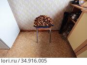 Грибы сушеные на противне. В кухне на табурете. Стоковое фото, фотограф Анатолий Матвейчук / Фотобанк Лори