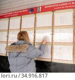 Девушка на бирже труда у информационной доски. Стоковое фото, фотограф Антонина / Фотобанк Лори