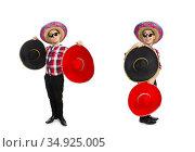 Funny mexican with sombrero in concept. Стоковое фото, фотограф Elnur / Фотобанк Лори