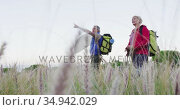 Senior hiker couple with backpacks pointing towards a direction while standing in the grass field. Стоковое видео, агентство Wavebreak Media / Фотобанк Лори