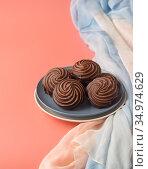 Зефир в шоколадной глазури на тарелке. Стоковое фото, фотограф Наталья Гармашева / Фотобанк Лори