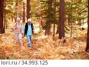 Senior,outdoor,walk. Стоковое фото, фотограф Monkey Business 2 / easy Fotostock / Фотобанк Лори