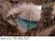 Flooded limestone cave interior with many stalactites and stalagmites around a blue pool of water, Drach caves / Cuevas del Drach, Porto Cristo, Mallorca, August 2018. Стоковое фото, фотограф Nick Upton / Nature Picture Library / Фотобанк Лори