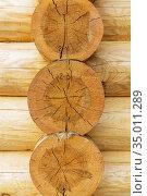 Wooden house made of natural logs. Стоковое фото, фотограф Дмитрий Кутлаев / Фотобанк Лори