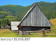 Wooden shpherd's huts in the Chocholowska Clearing. Стоковое фото, фотограф Ignacy Wojciech Pilch / age Fotostock / Фотобанк Лори