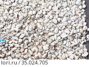 Cigarette butts are in white pebbles, small parts of a cigarette that is left after smoking, background. Стоковое фото, фотограф Кекяляйнен Андрей / Фотобанк Лори