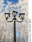Triple lantern among the frost-covered branches. Стоковое фото, фотограф Григорий Писоцкий / Фотобанк Лори