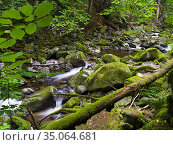 Valley of river Wolfsteiner Ohe (Buchberger Leite) in the Bavarian... Стоковое фото, фотограф Martin Zwick / age Fotostock / Фотобанк Лори
