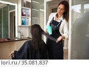 Hairdresser combs woman's hair, hairdressing salon. Стоковое фото, фотограф Tryapitsyn Sergiy / Фотобанк Лори