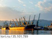 view of loading cranes in the seaport at sunset, Batumi, Georgia. Стоковое фото, фотограф Константин Лабунский / Фотобанк Лори