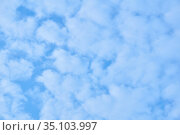 Natural background - blue sky with light cumulus clouds. Стоковое фото, фотограф Евгений Харитонов / Фотобанк Лори
