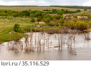 Flooded trees on the lake nestled among the hills in the spring flood. Стоковое фото, фотограф Акиньшин Владимир / Фотобанк Лори