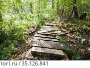 Empty abandoned footbridge in the forest. Стоковое фото, фотограф EugeneSergeev / Фотобанк Лори