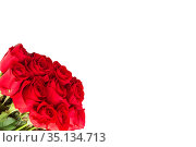 Bouquet of red roses isolated on white background. Стоковое фото, фотограф Юлия Бабкина / Фотобанк Лори