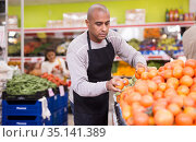 Seller lays out red tomatoes on supermarket counter. Стоковое фото, фотограф Яков Филимонов / Фотобанк Лори