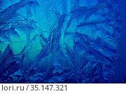Настоящие морозные узоры на стекле. Стоковое фото, фотограф Наталья Горкина / Фотобанк Лори