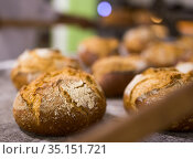 Freshly baked hot crusty bread, closeup view. Стоковое фото, фотограф Яков Филимонов / Фотобанк Лори