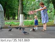 Grandmother and granddaughter feed pigeons. Стоковое фото, фотограф Арестов Андрей Павлович / Фотобанк Лори