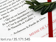 Lectionary and boxwood branch. Holy week and Palm Sunday celebration... Стоковое фото, фотограф Pascal Deloche / Godong / age Fotostock / Фотобанк Лори