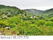 Центральный горный массив. Природный парк. Ardèche, région Auvergne-Rhône-Alpes. France. Стоковое фото, фотограф Вера Смолянинова / Фотобанк Лори