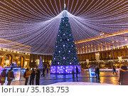 Новогодняя елка на Лубянской площади вечером. Москва. Редакционное фото, фотограф Владимир Сергеев / Фотобанк Лори