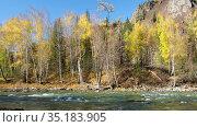 Video of Altai river Kumir in Autumn season. River rapids near Girl's Plyosy. Siberia, Russia. Стоковое видео, видеограф Serg Zastavkin / Фотобанк Лори