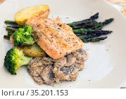 dish of fried river trout fillet with garnish of broccoli, asparagus sprouts and mushroom sauce. Стоковое фото, фотограф Татьяна Яцевич / Фотобанк Лори