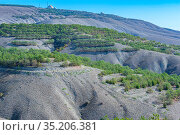 Landscape of loamy and cretaceous relief mountains with forest plantations. Стоковое фото, фотограф Владимир Ушаров / Фотобанк Лори