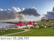 Grassy beach Grimmershoerner-Bay, Cuxhaven, Lower Saxony, Germany... Стоковое фото, фотограф Jürgen Wackenhut / age Fotostock / Фотобанк Лори