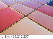 Aerial view of salt pans, pink from pigment of Bacteria (Halobacterium) which thrive in highly saline environments. Salt extracted here is shipped throughout... Стоковое фото, фотограф Shane Gross / Nature Picture Library / Фотобанк Лори
