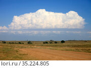 Beautiful landscape on a hot sunny summer day in the Crimean steppe. Стоковое фото, фотограф Яна Королёва / Фотобанк Лори