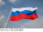 Russia flag. Стоковое фото, фотограф Илья Галахов / Фотобанк Лори