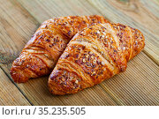 Tasty dessert -puff pastry croissant with sesame seed. Стоковое фото, фотограф Яков Филимонов / Фотобанк Лори