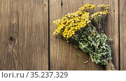 Herbal alternative medicine, medicinal dry herb Tanacetum for phytotherapy, bunch of dried tansy plant on natural wooden background with copy space. Стоковое фото, фотограф Светлана Евграфова / Фотобанк Лори